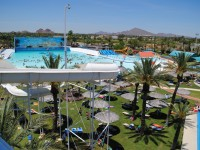 Big Surf Waterpark, photo courtesy of Tempe Tourism